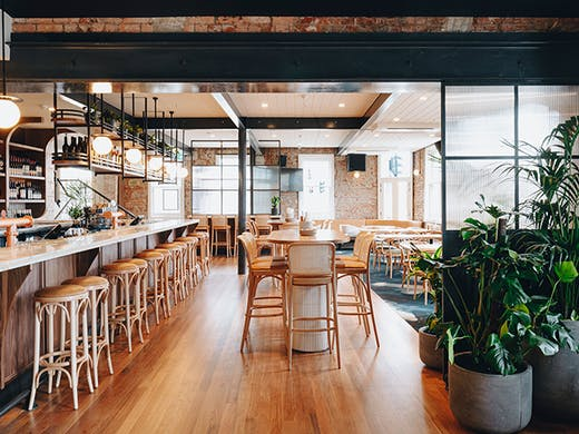 The interior of the pub with wooden floors a long bar and plants.