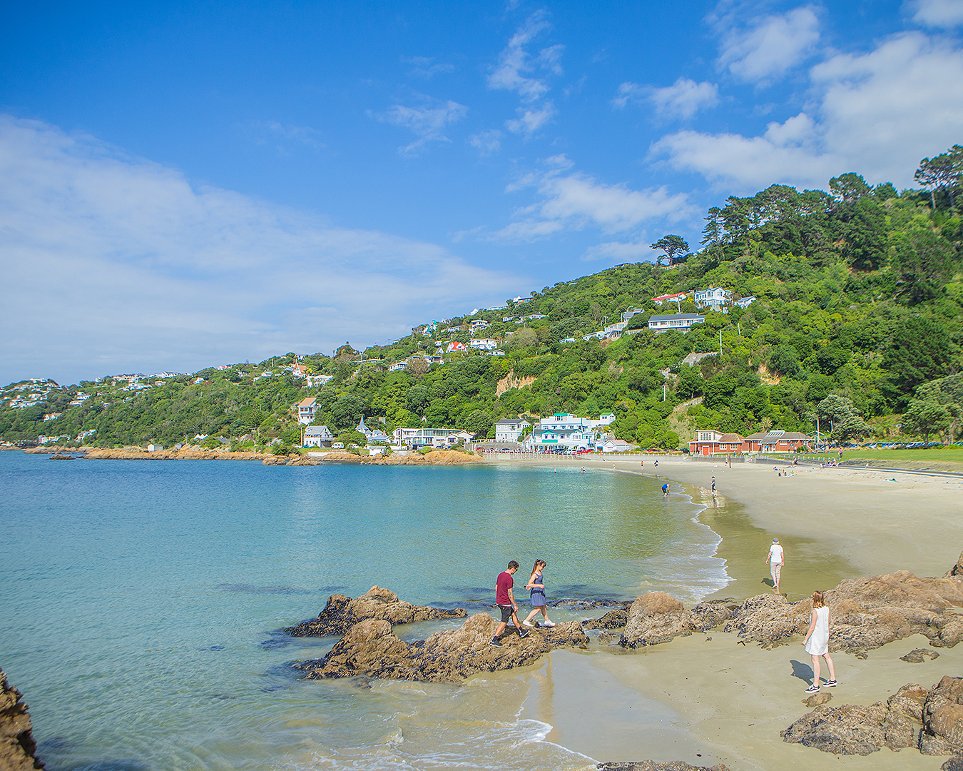 Scorching Bay in Wellington looks idyllic