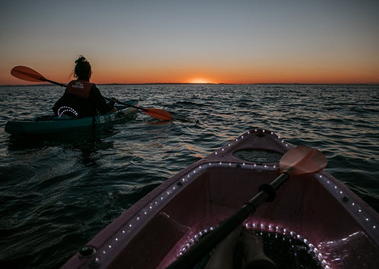 Night Kayak Tour moreton