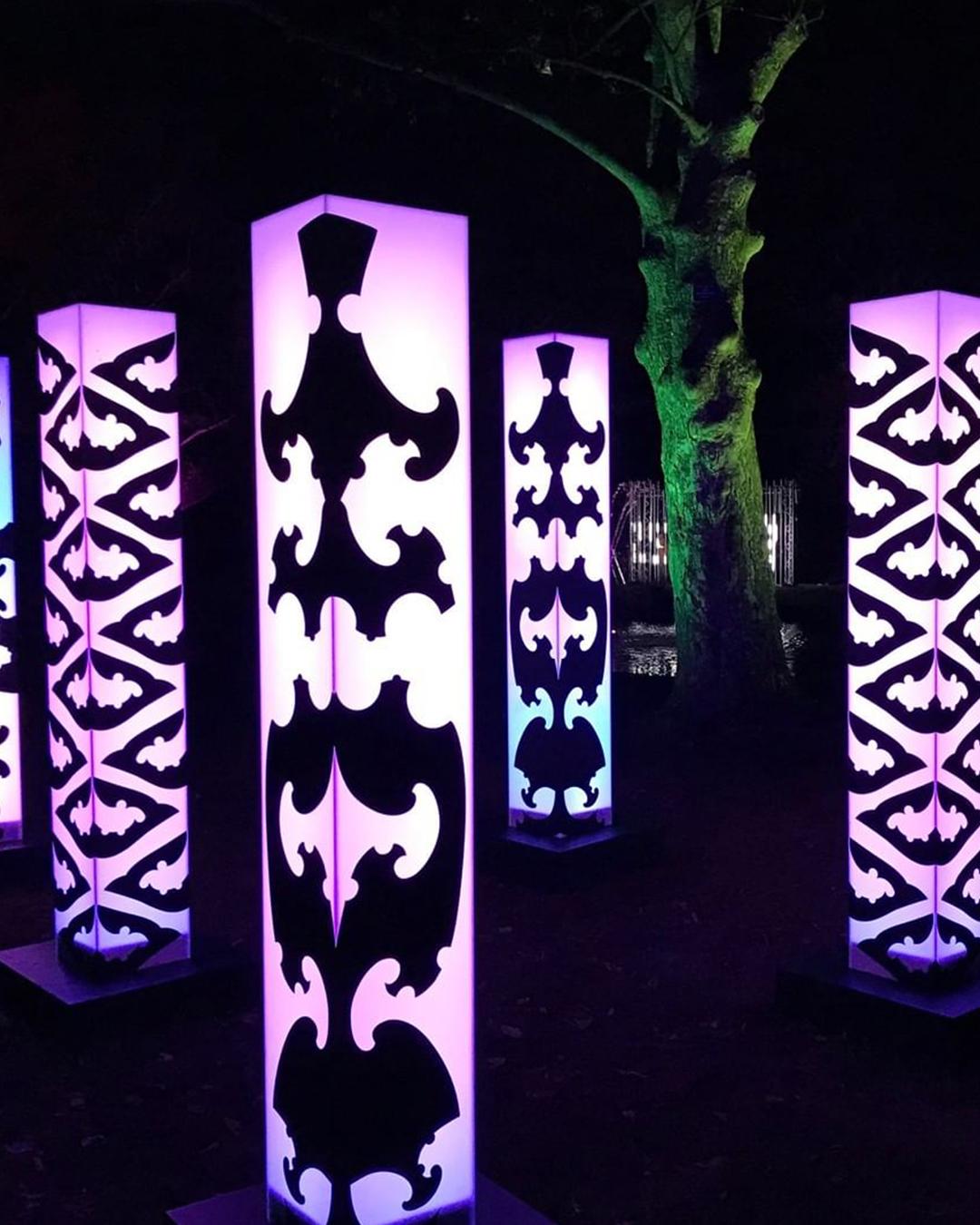 A creative work at Te Ramaroa Light Festival
