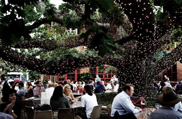 Sydney's Best Beer Gardens | The 2015 Edit