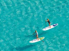 The Best Stand Up Paddle Boarding Spots In Auckland
