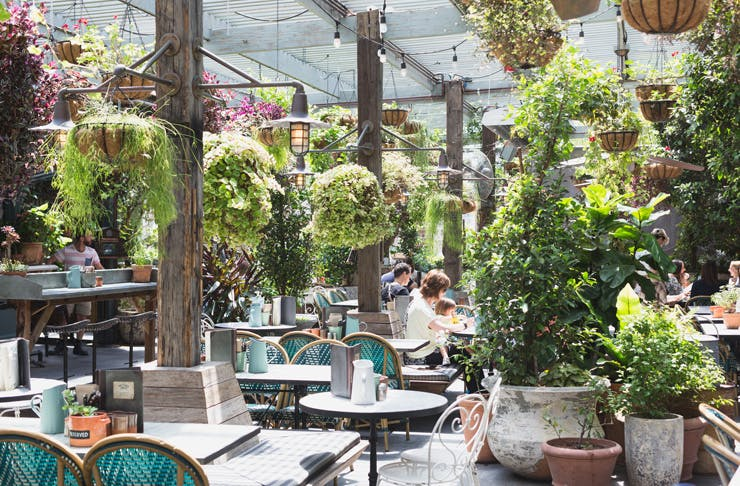 The Potting Shed cafe in Sydney