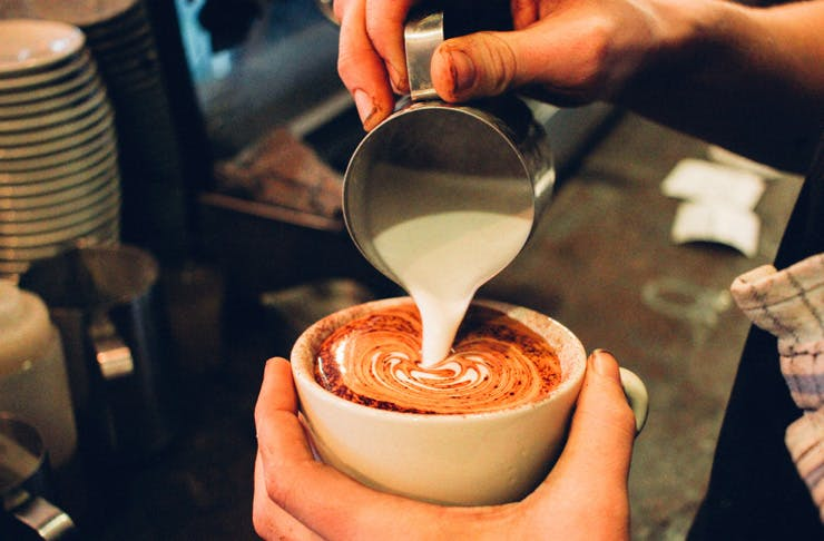 Best coffee in North Sydney cafes