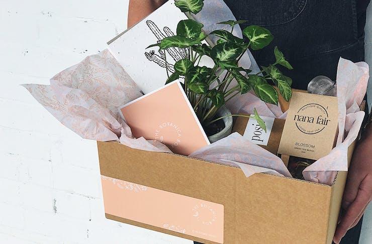 The Borrowed Nursery Botanica Box