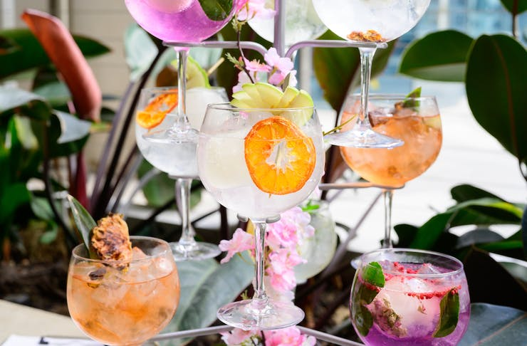 Nine colourful G&Ts; hanging from a metallic 'tree'