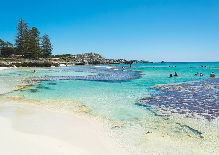 The New Year's Eve Island Party You Can't Miss, Rottnest Island, New Years Eve Party Perth, Perth NYE
