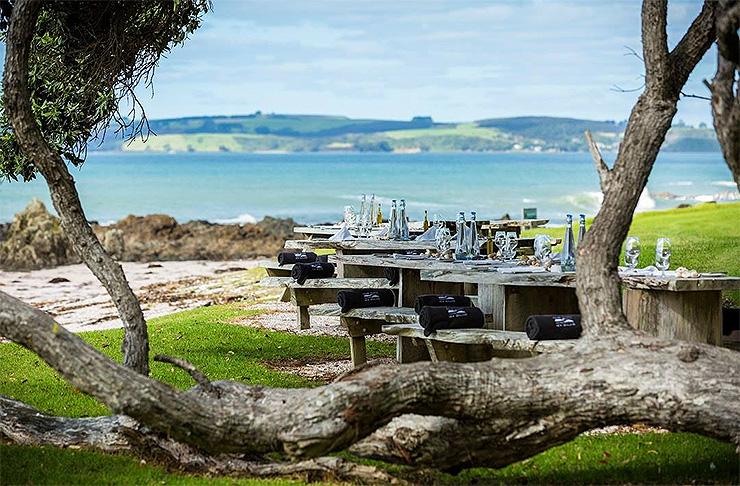 A simple table set up beneath a pohutakawa tree at the lodge at Kauri Cliffs.