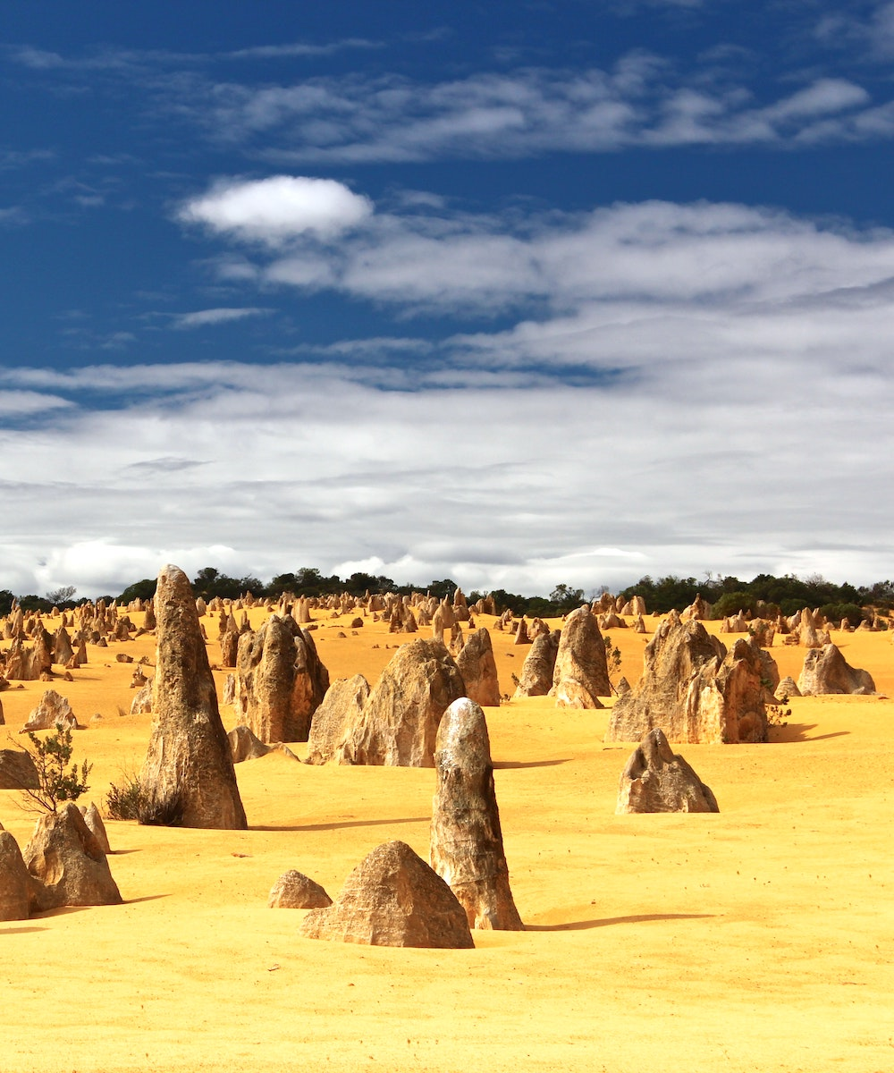 Sandstone at The Pinnacles in Western Australia