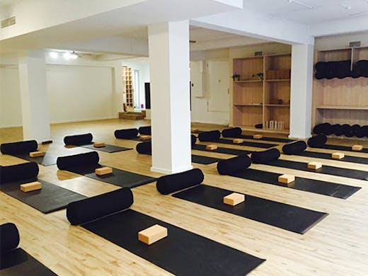 The Yoga Vine, Perth, Vinyasa, Yoga in Perth, Yoga Perth, Perth Yoga Studio