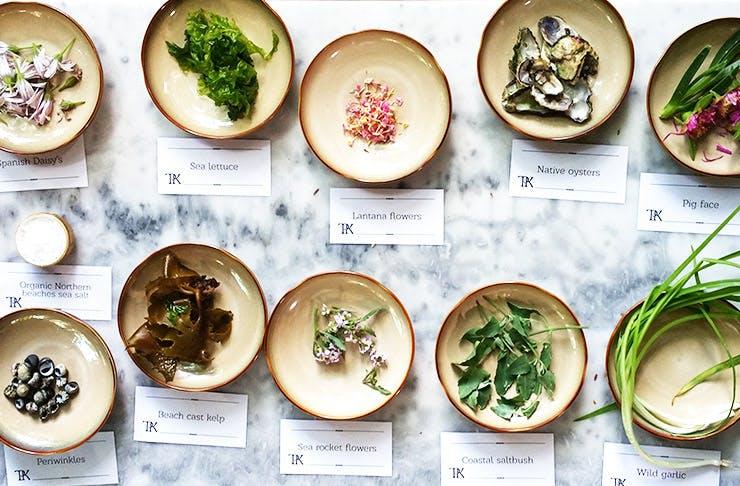 sydney's best restaurants that forage