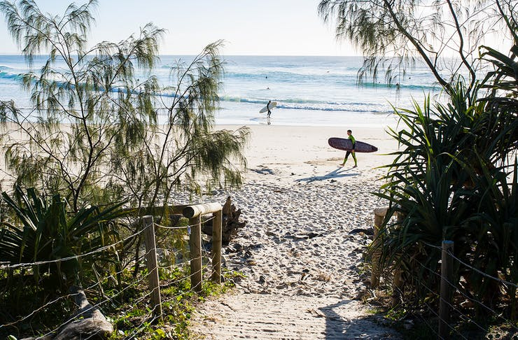 things to do on the gold coast spring