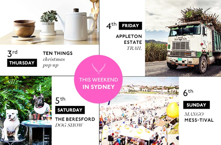 Things to Do This Weekend in Sydney