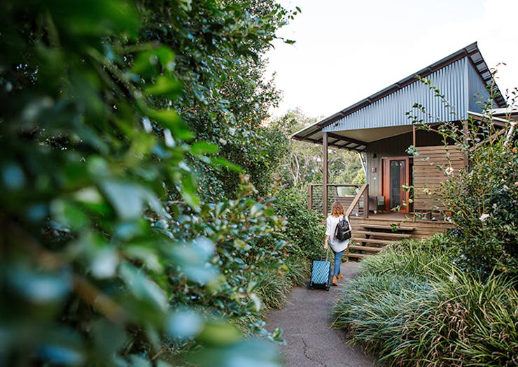23 Things To Do In The Hinterland (We're Talking Montville And Maleny)