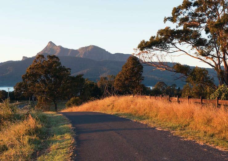 A narrow road in the Tweed region leads towards Mt Warning.
