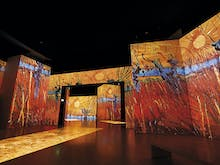 Grab Tickets To The Epic Multi-Sensory Van Gogh Alive Exhibition Coming To Auckland This April