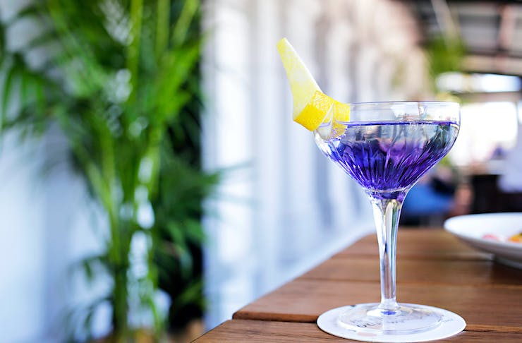 A purple cocktail in a coupe glass at The Royal