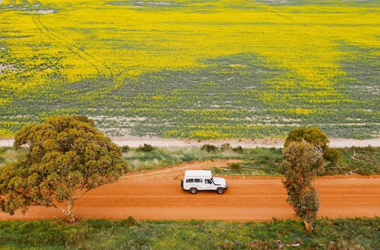 A birds eye view of a car driving down a dirt track surrounded by wildflowers
