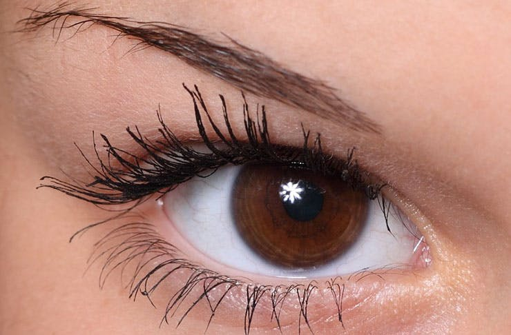 WTF Is Up With These New Eyebrow Trends?