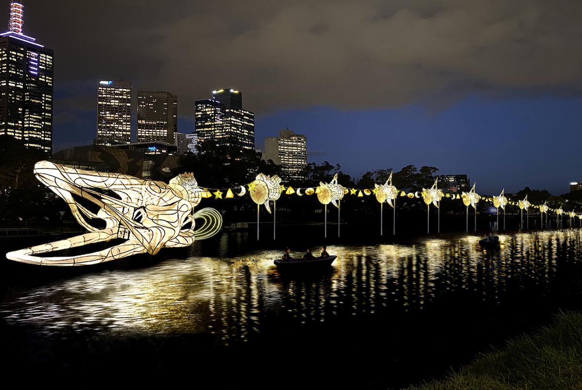 A huge eel lantern snakes along the Yarra River.
