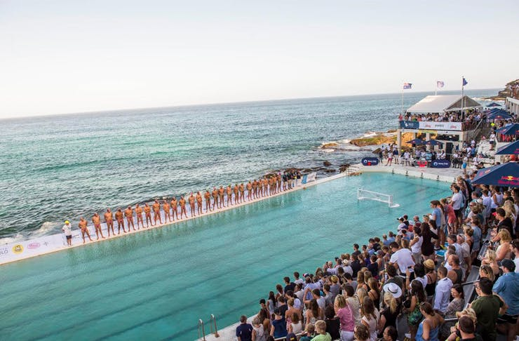 Water Polo Bondi Icebergs