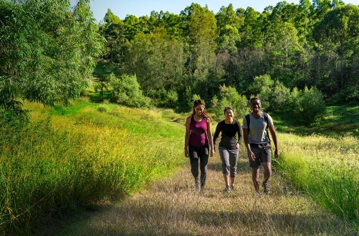 Three hikers in Western Sydney Parklands.