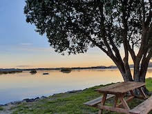 Pitch A Tent At 10 Of The Best Camping Spots In Auckland