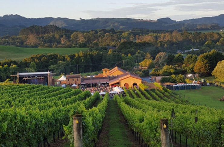 Where To Go Wine Tasting In And Around Auckland