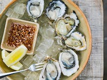 Here's How To Get $1 Oysters in Auckland