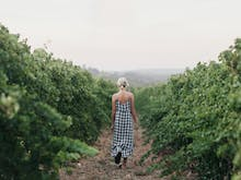 Every Reason You Need To Go To CinefestOZ Film Festival In Magical Margaret River