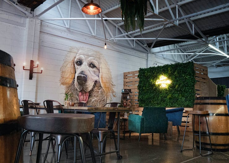 A mural of a dog on the wall in the gin tasting room