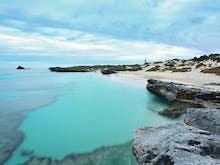 Here's Why You Need To Visit Rottnest Island This Winter