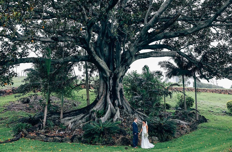 9 Of The Most Beautiful Wedding Venues In Northern Nsw