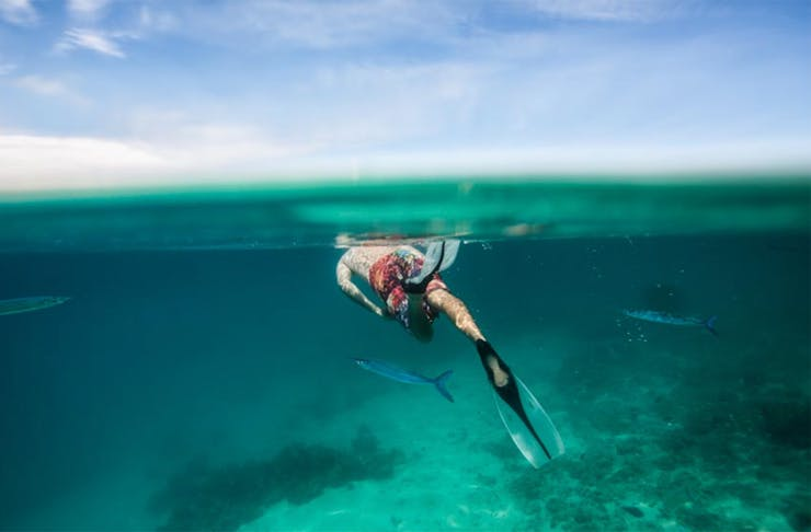 snorkelling-moreton-island