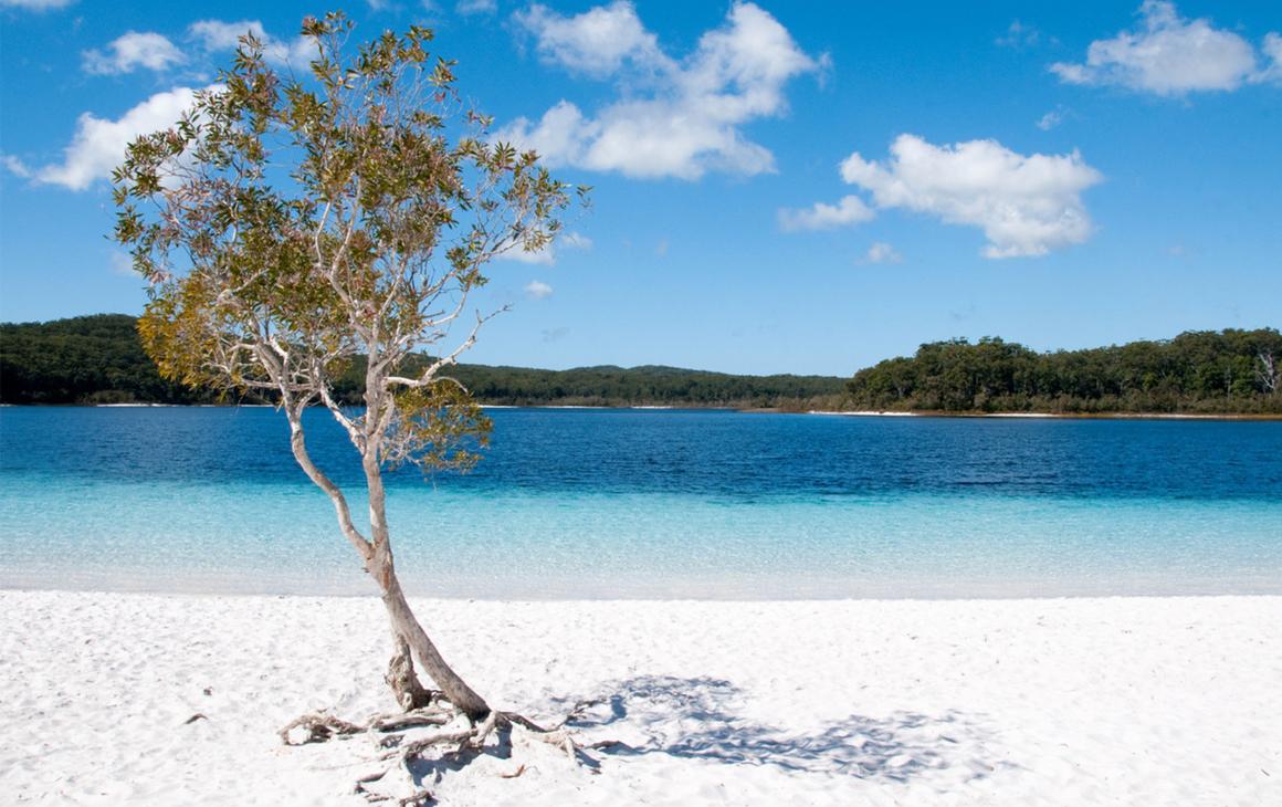 Fraser Island Day Trip