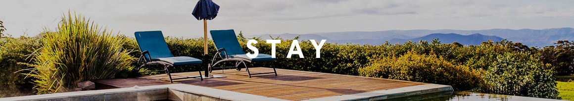 stay banner