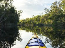 5 Sunshine Coast Nature Adventures You Have To Do At Least Once