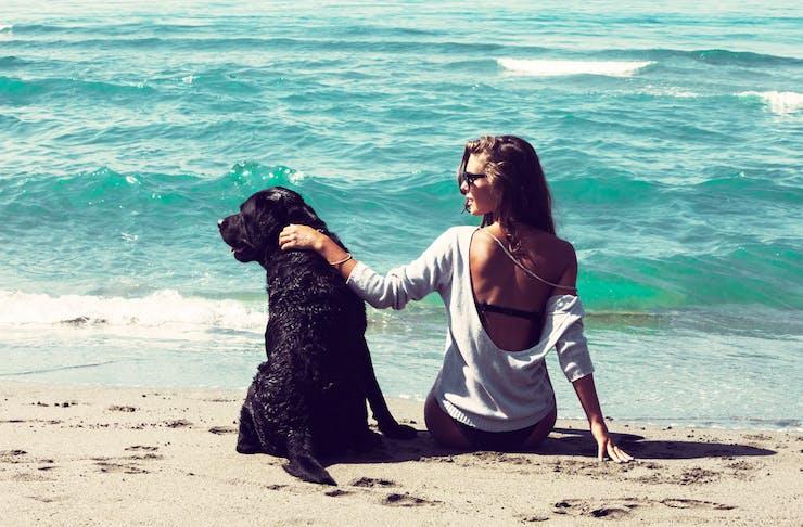 best dog beach sunshine coast