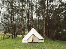 8 Of The Gold Coast's Best Camping Spots For Camping Rookies