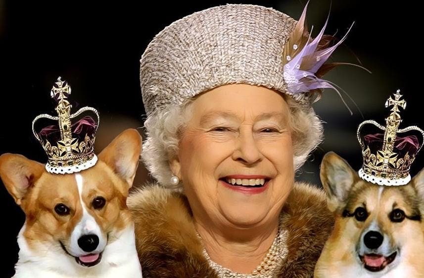 What's Open Queen's Birthday Public Holiday | 2014 Edition