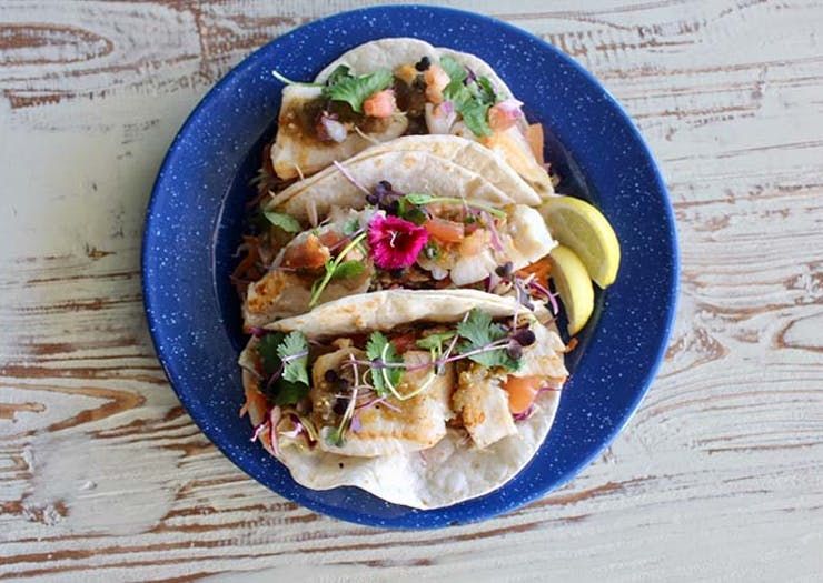 New Opening: Ain't No Taco, Auckland
