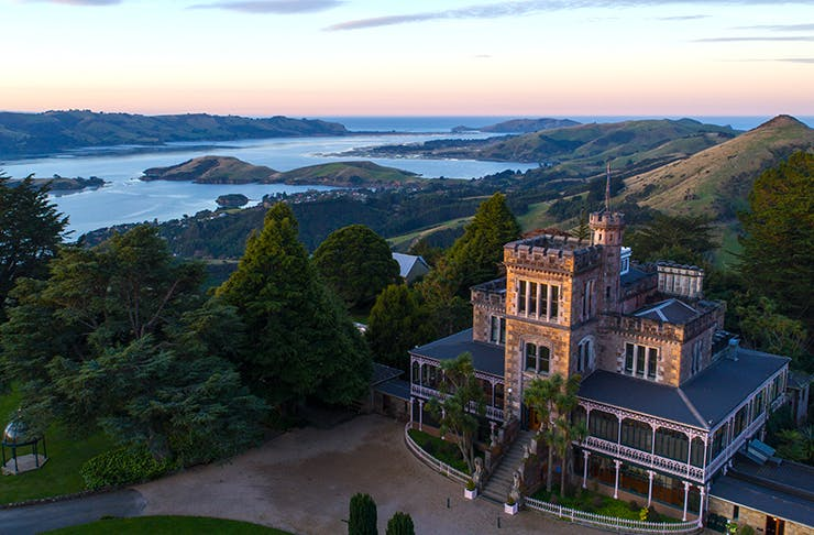 All The Reasons You Need To Visit Dunedin This Year