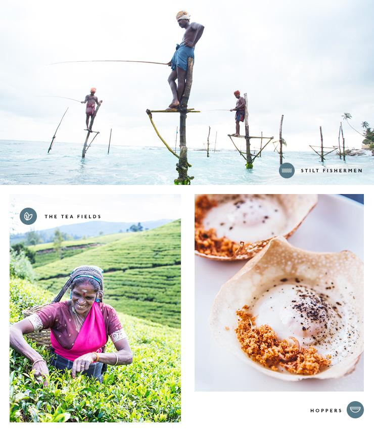 Sri Lanka Amex
