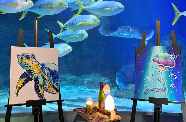 Paintings in front of an aquarium.