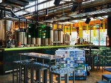 Knock Back West Australian Pale Ale At Atomic Beer Project, Redfern's New Microbrewery