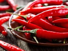 Spice Up Your Life At Auckland's Fiery Hot Sauce Festival