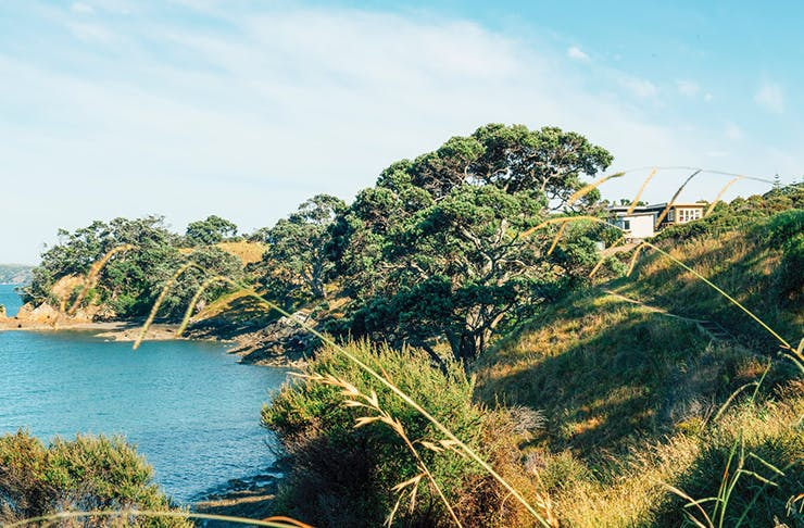 Adventure Spots, Adventures Auckland, things to do in Auckland, whats on auckland, kayaking auckland, hikes auckland