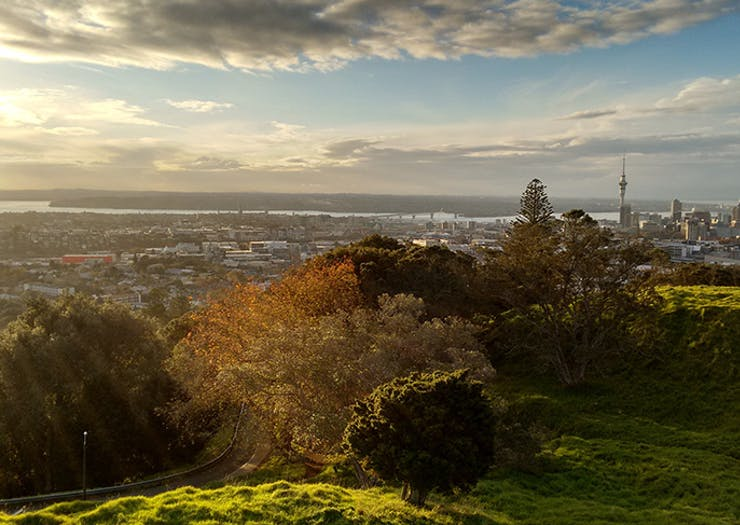 14 Awesome Things To Do In Auckland This Weekend