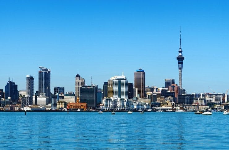 top things to do in auckland