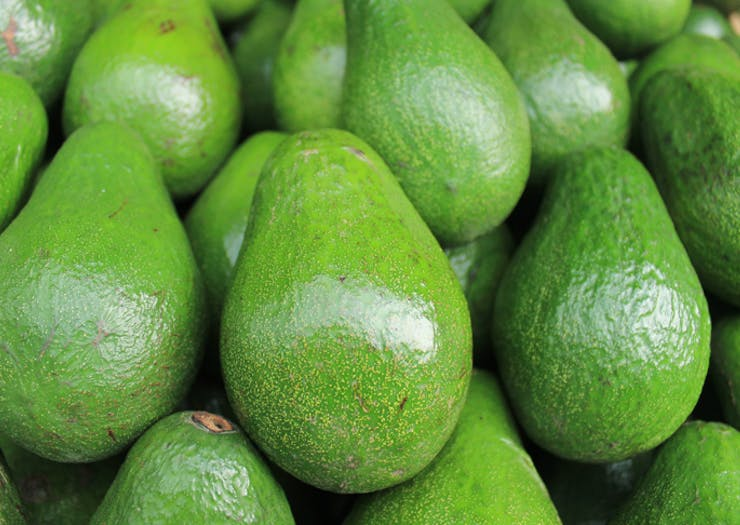 Avozillas Have Hit Perth In Case You've Been Looking for 1.5kg Avos